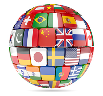 Globe and Flags image